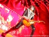 KISS @ Friends Arena - 20130601 - FO - Bild07