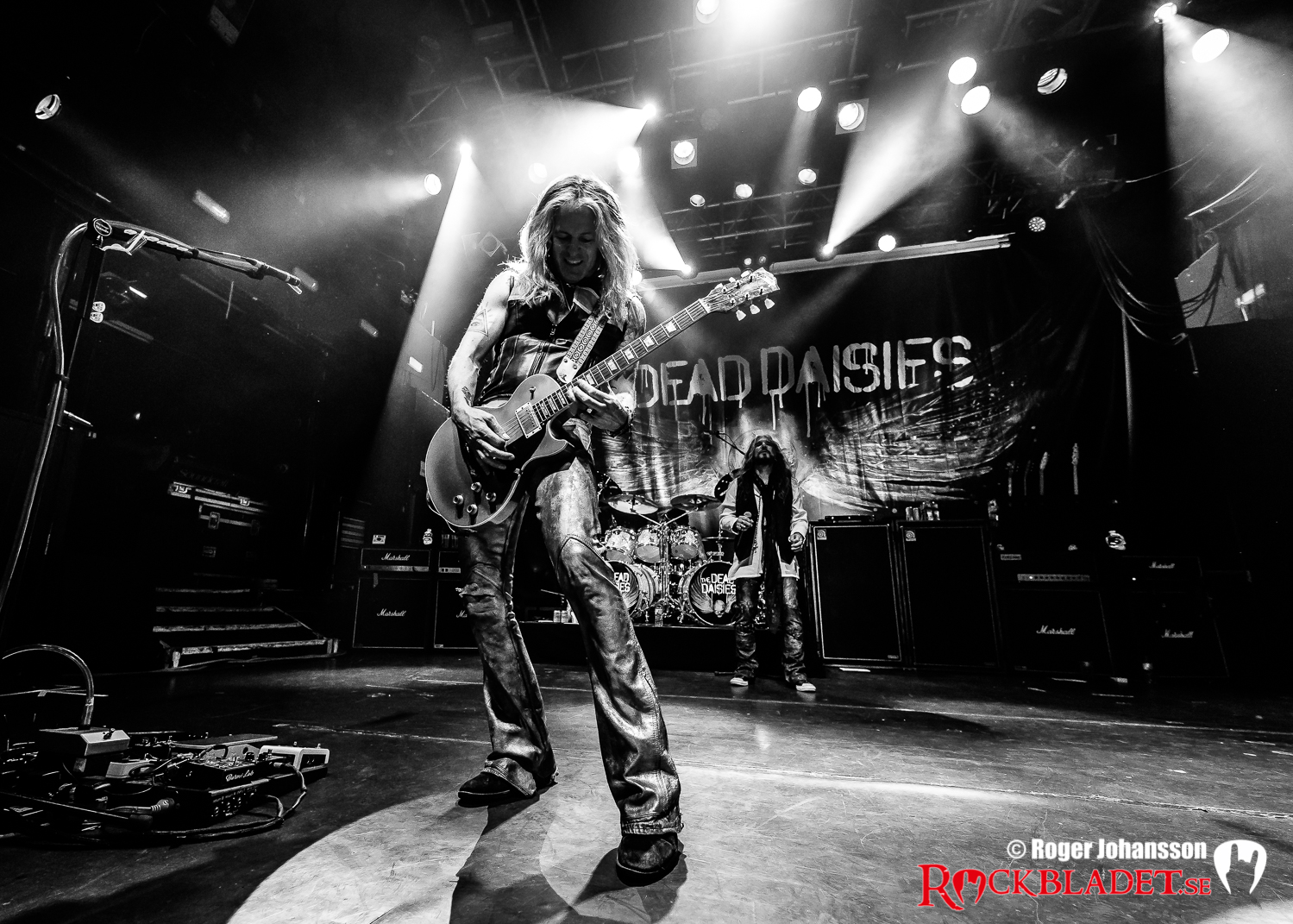 180410-thedeaddaisies-RJ-Bild04