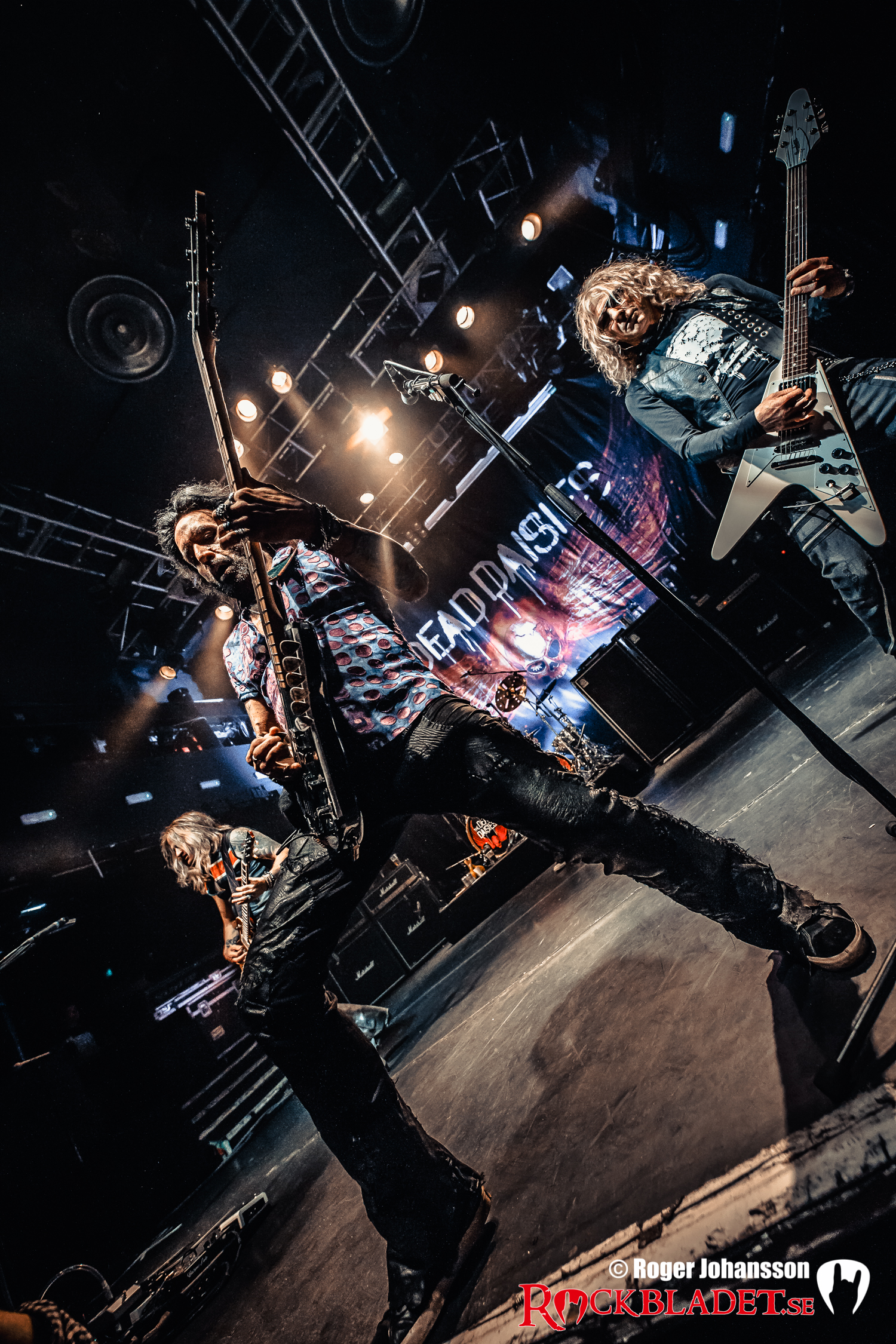 180410-thedeaddaisies-RJ-Bild07