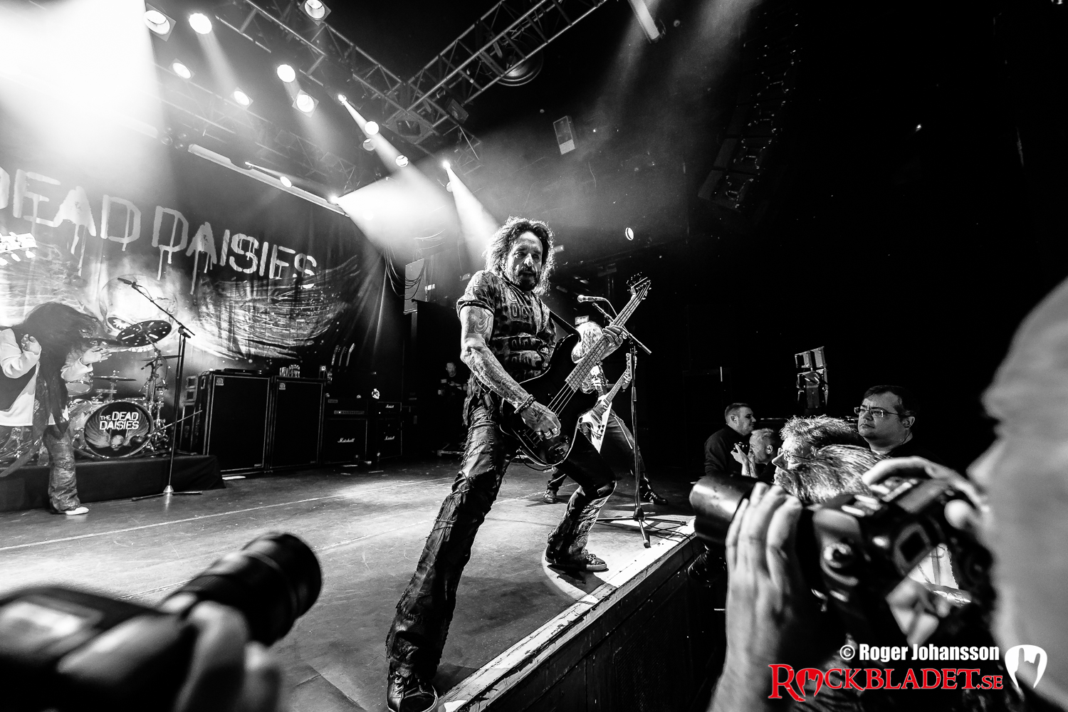 180410-thedeaddaisies-RJ-Bild09