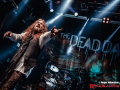 180410-thedeaddaisies-RJ-Bild01
