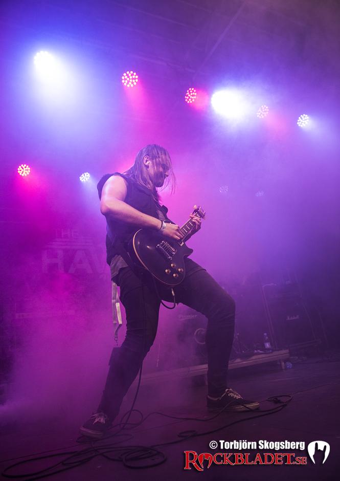 Rockviken_TheHawkins_TSKOGSBERG_006