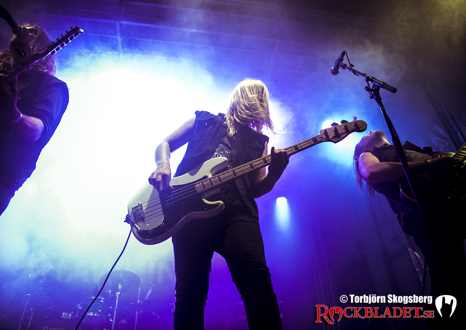Rockviken_TheHawkins_TSKOGSBERG_011